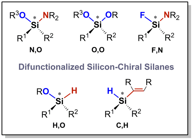 Difunctionalized silicon‐chiral silanes