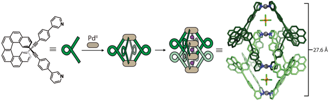 Schematic representation of a chiral helicene-based bis-monodentate ligand that assembles upon palladium addition into an interpenetrated coordination cage.